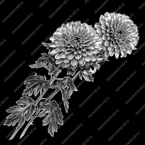 Гравировка цветы Цв-013