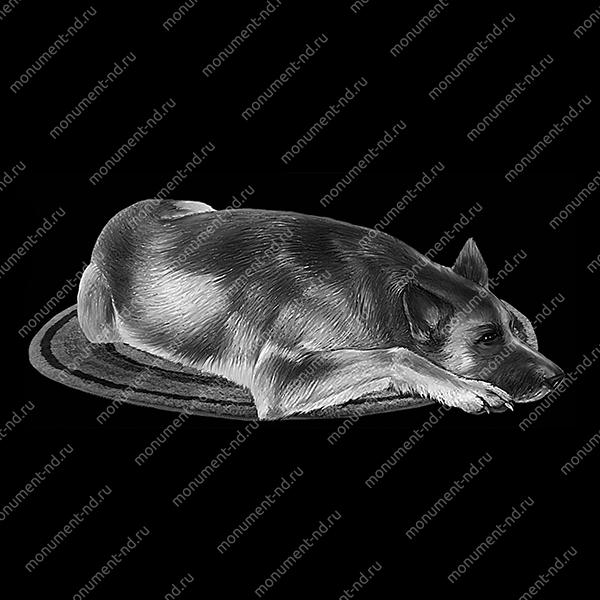 Гравировка животных Ж -028