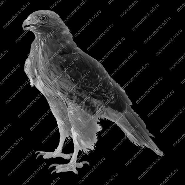 Гравировка животных Ж -014