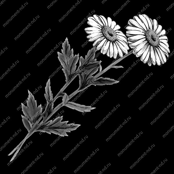 Гравировка цветы Цв-011