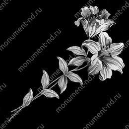 Гравировка цветы Цв-065 32 х12 / ≤ 40х60 см