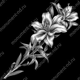Гравировка цветы Цв-014 32 х12 / ≤ 40х60 см