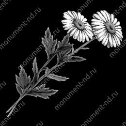 Гравировка цветы Цв-011 32 х12 / ≤ 40х60 см