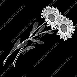 Гравировка цветы Цв-010 32 х12 / ≤ 40х60 см