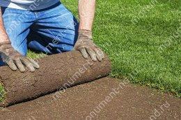 Озеленение на могилу натуральное живая трава цвет зелёный 1 кв.м.