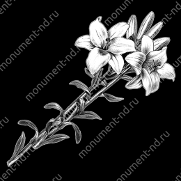 Гравировка цветы Цв-066 32 х12 / ≤ 40х60 см