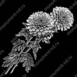 Гравировка цветы Цв-013 32 х12 / ≤ 40х60 см