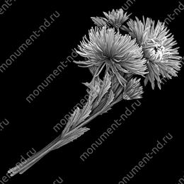 Гравировка цветы Цв-017 32 х12 / ≤ 40х60 см